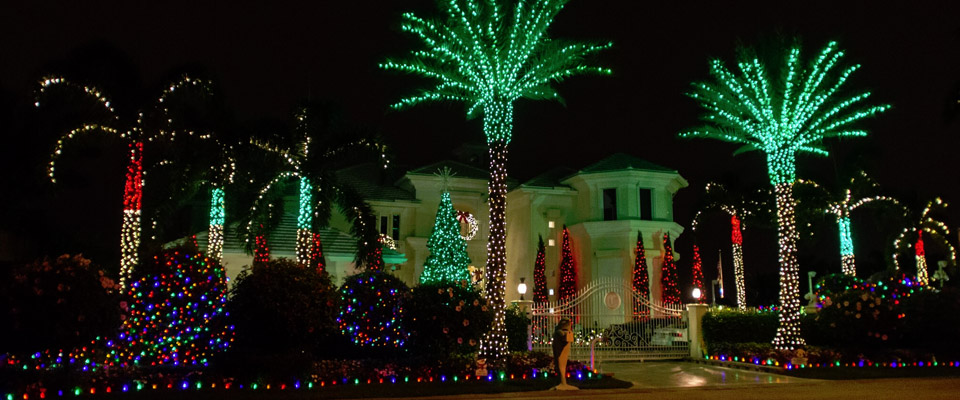 Holiday Lighting Lake Worth, West Palm Beach   Unique landscape lighting  for home and business - Holiday Lighting Lake Worth, West Palm Beach Unique Landscape